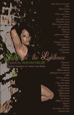"""Shelter at the Light House"" [Book]"